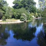 Walk in London: Regent's Park